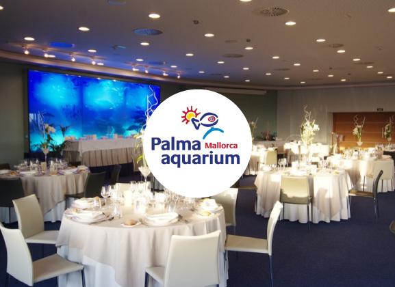 palma-aquarium-mallorca